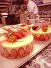 Bebry_cakes
