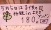 Yomogi_kashiwa_2